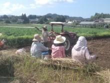 7月29日阿久根さん堆肥散布見学